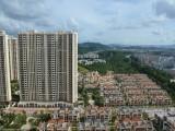 东莞楼市:东莞买哪个区域投资好?听行内人说完,心里有底了
